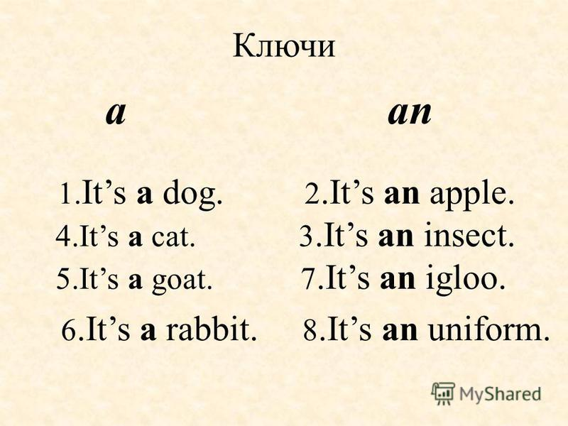 Ключи a an 1. Its a dog. 2.Its an apple. 4.Its a cat. 3.Its an insect. 5.Its a goat. 7.Its an igloo. 6.Its a rabbit. 8.Its an uniform.