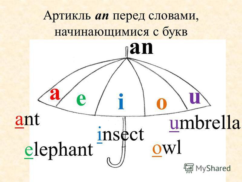 Артикль аn перед словами, начинающимися с букв oi u e a an ant elephant insect owl umbrella