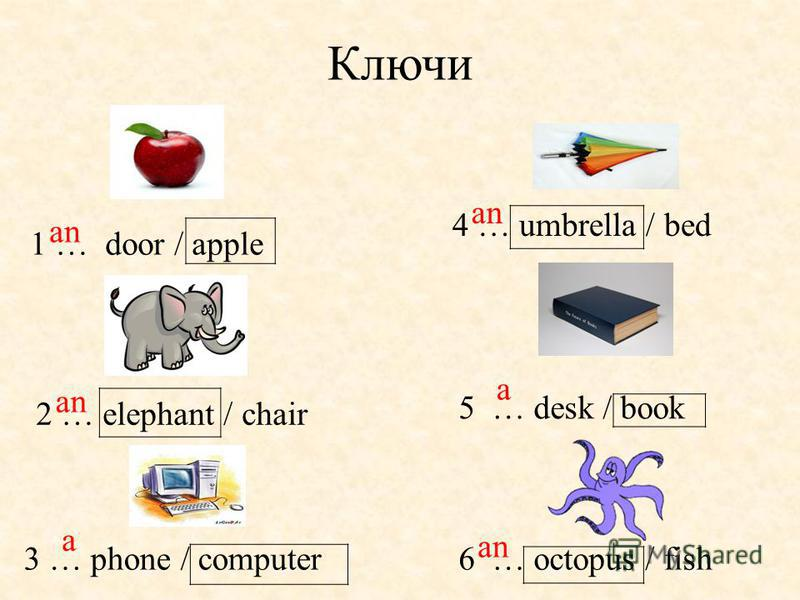 Ключи 1 … door / apple 3 … phone / computer6 … octopus / fish 5 … desk / book 4 … umbrella / bed 2 … elephant / chair an a a