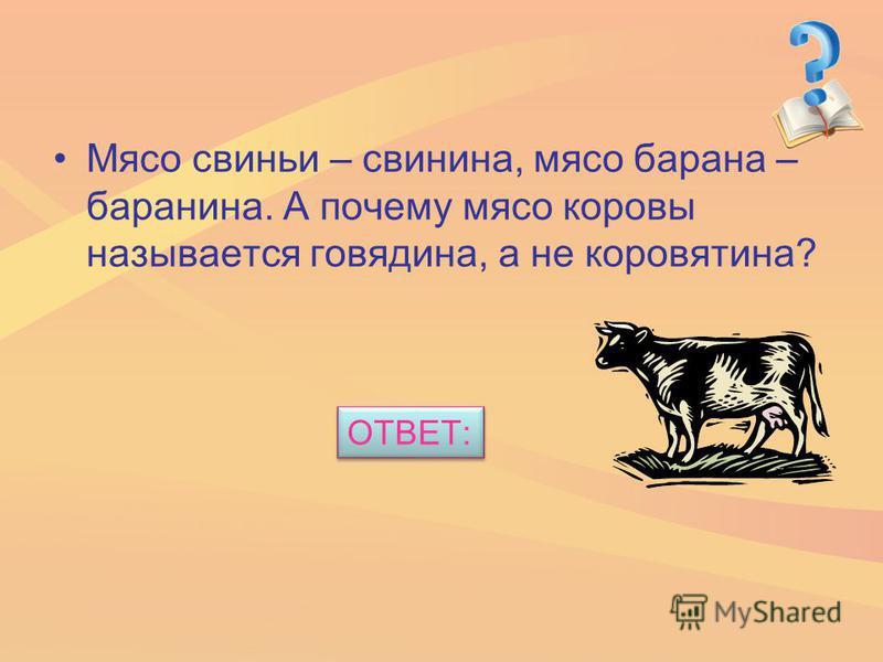 Мясо свиньи – свинина, мясо барана – баранина. А почему мясо коровы называется говядина, а не коровятина? ОТВЕТ: