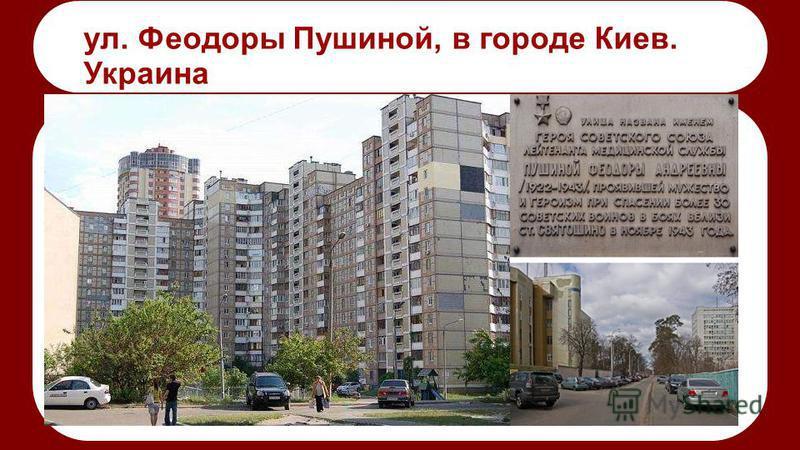 ул. Феодоры Пушиной, в городе Киев. Украина