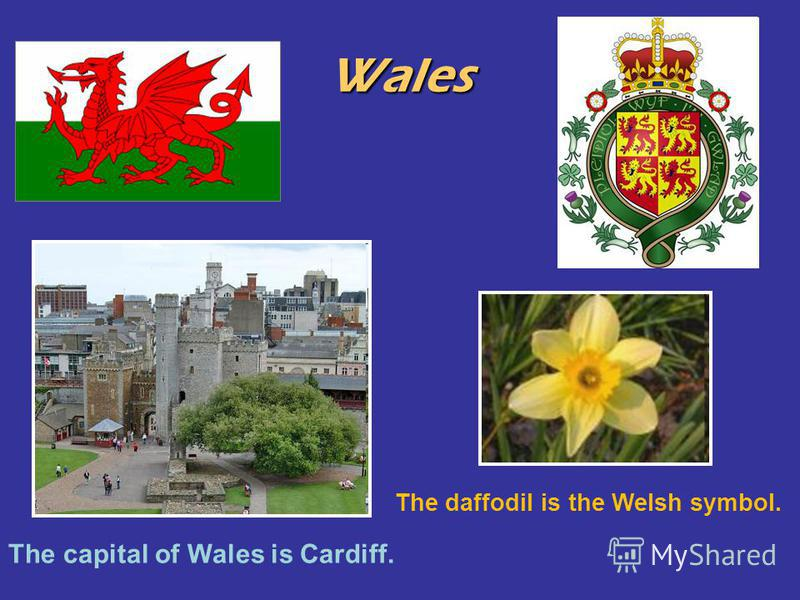 Wales The capital of Wales is Cardiff. The daffodil is the Welsh symbol.