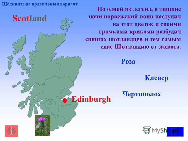 По одной из легенд, в тишине ночи норвежский воин наступил на этот цветок и своими громкими криками разбудил спящих шотландцев и тем самым спас Шотландию от захвата. Роза Клевер Чертополох Щёлкните на правильный вариант Scotland Edinburgh
