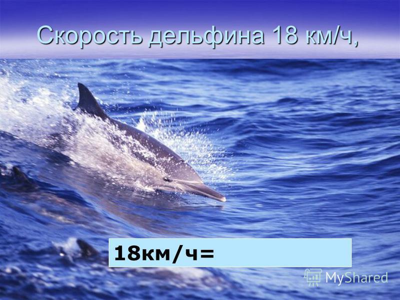 Скорость дельфина 18 км/ч, 18 км/ч=