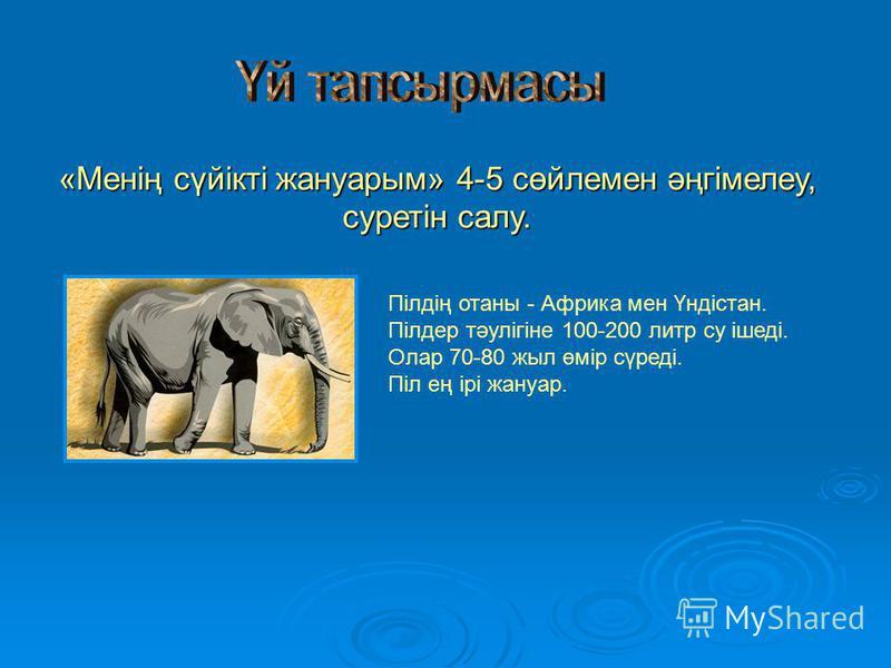 «Менің сүйікті жануарым» 4-5 сөйлемен әңгімелеу, суретін салу. Пілдің отаны - Африка мен Үндістан. Пілдер тәулігіне 100-200 литр су ішеді. Олар 70-80 жыл өмір сүреді. Піл ең ірі жануар.