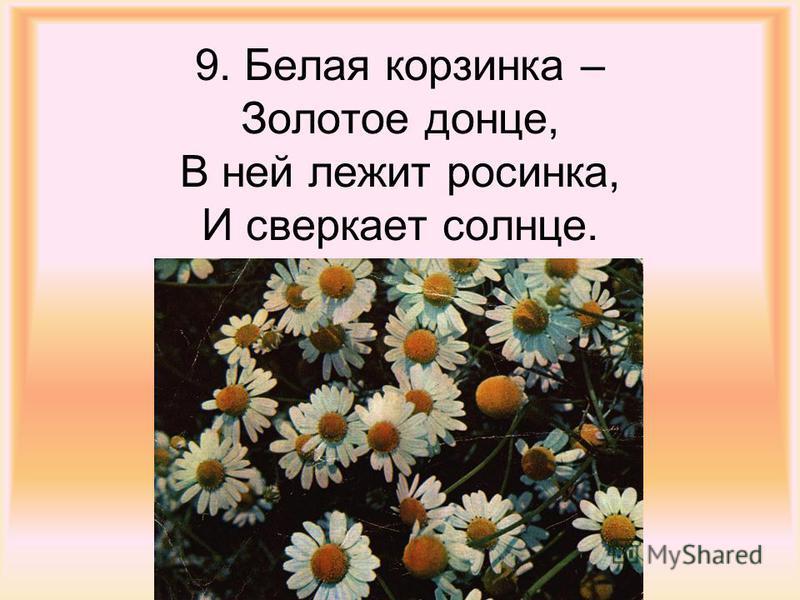 9. Белая корзинка – Золотое донце, В ней лежит росинка, И сверкает солнце.