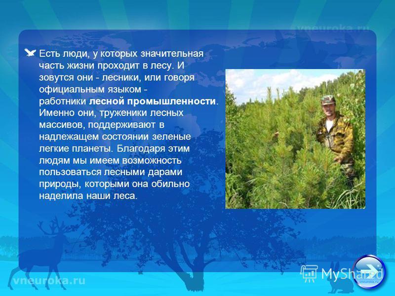 Есть люди, у которых значительная часть жизни проходит в лесу. И зовутся они - лесники, или говоря официальным языком - работники лесной промышленности. Именно они, труженики лесных массивов, поддерживают в надлежащем состоянии зеленые легкие планеты