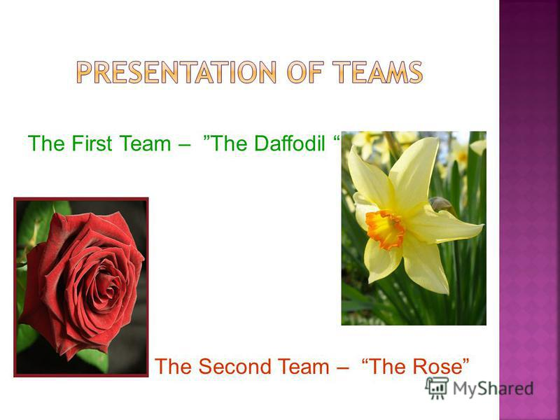 The First Team – The Daffodil The Second Team – The Rose