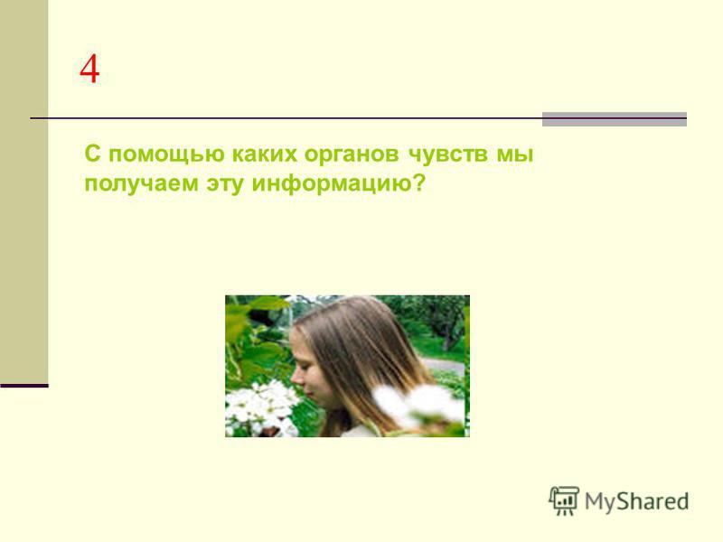 4 С помощью каких органов чувств мы получаем эту информацию?