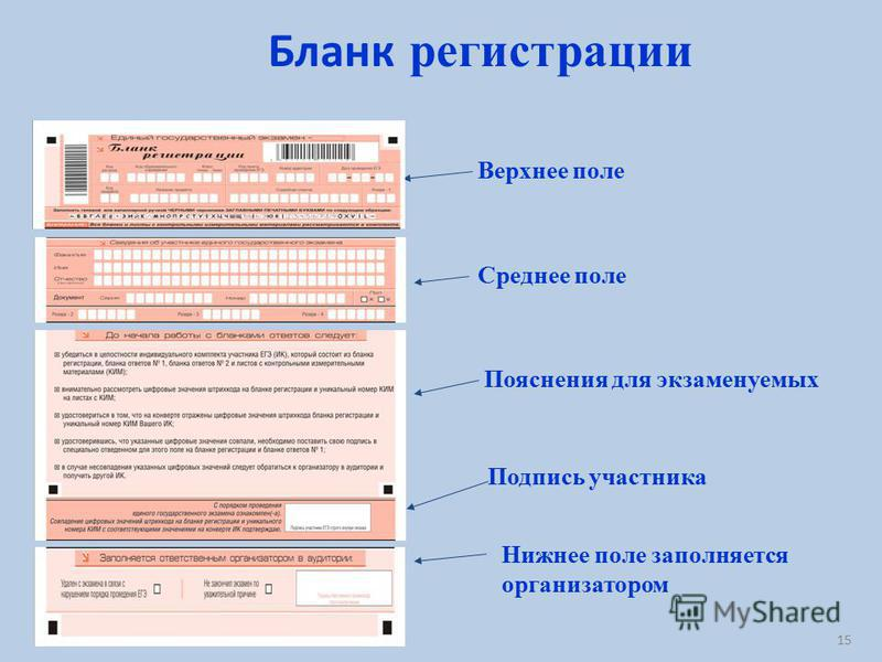 Бланк регистрации Верхнее поле Среднее поле Пояснения для экзаменуемых Нижнее поле заполняется организатором Подпись участника 15