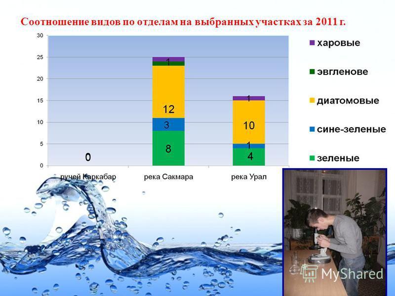 Page 25 Соотношение видов по отделам на выбранных участках за 2011 г.