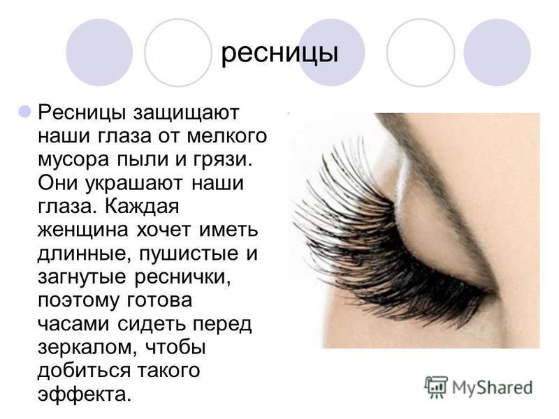 ресницы Ресницы защищают наши глаза от мелкого мусора пыли и грязи. Они украшают наши глаза. Каждая женщина хочет иметь длинные, пушистые и загнутые реснички, поэтому готова часами сидеть перед зеркалом, чтобы добиться такого эффекта.