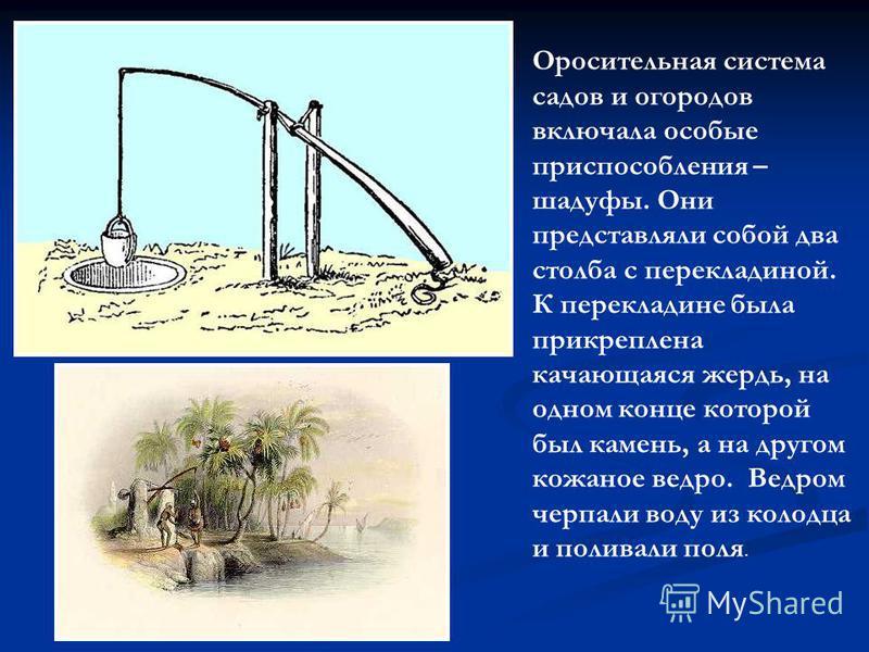 Оросительная система садов и огородов включала особые приспособления – шадуфы. Они представляли собой два столба с перекладиной. К перекладине была прикреплена качающаяся жердь, на одном конце которой был камень, а на другом кожаное ведро. Ведром чер