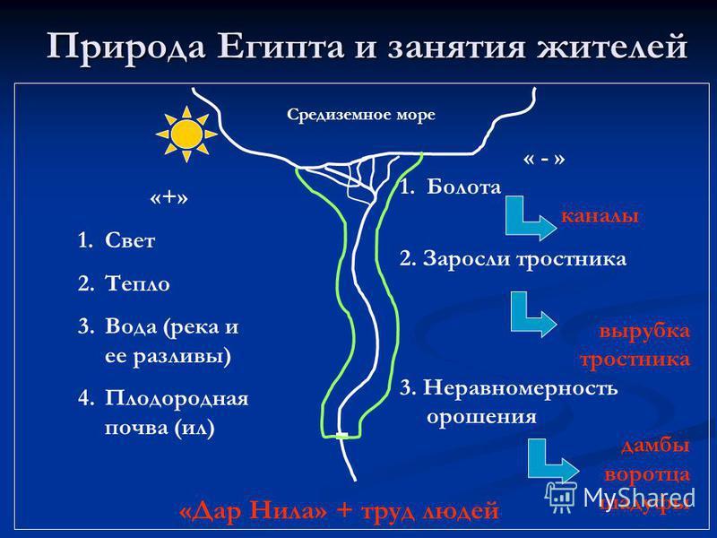 Природа Египта и занятия жителей Средиземное море «+» 1. Свет 2. Тепло 3. Вода (река и ее разливы) 4. Плодородная почва (ил) « - » 1. Болота каналы 2. Заросли тростника вырубка тростника 3. Неравномерность орошения дамбы воротца шадуфы «Дар Нила» + т