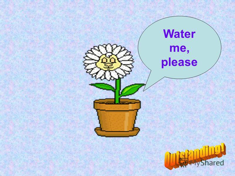 Water me, please