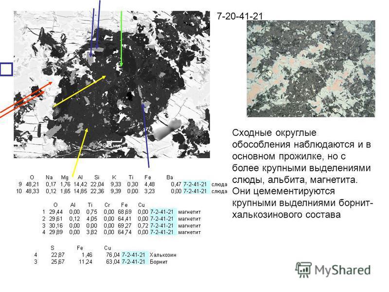 7-20-41-21 Сходные округлые обособления наблюдаются и в основном прожилке, но с более крупными выделениями слюды, альбита, магнетита. Они цемементируются крупными выделениями борнит- халькозинового состава