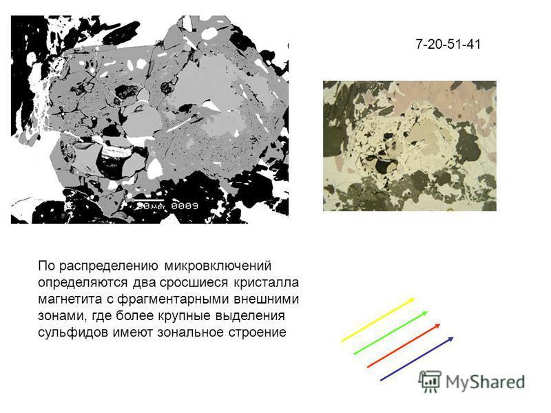 7-20-51-41 По распределению микровключений определяются два сросшиеся кристалла магнетита с фрагментарными внешними зонами, где более крупные выделения сульфидов имеют зональное строение
