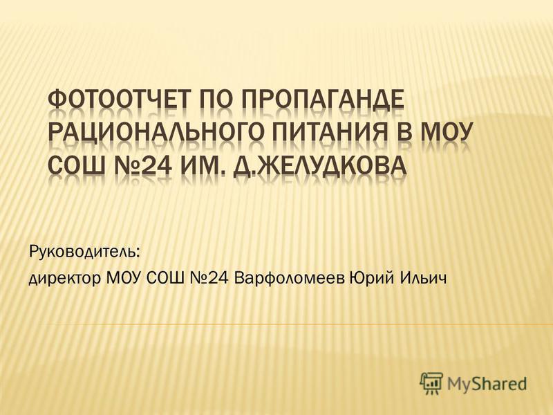 Руководитель: директор МОУ СОШ 24 Варфоломеев Юрий Ильич