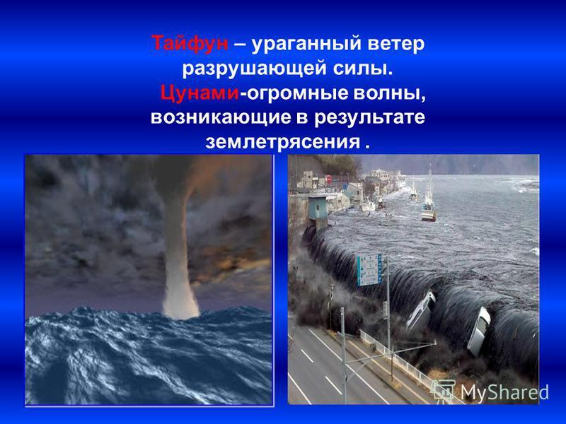 Тайфун – ураганный ветер разрушающей силы. Цунами-огромные волны, возникающие в результате землетрясения.