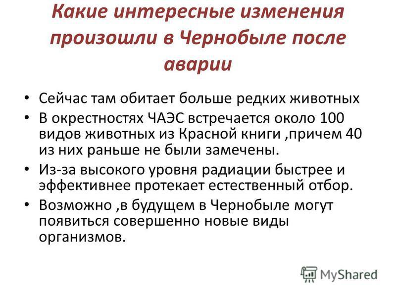 Какие интересные изменения произошли в Чернобыле после аварии Сейчас там обитает больше редких животных В окрестностях ЧАЭС встречается около 100 видов животных из Красной книги,причем 40 из них раньше не были замечены. Из-за высокого уровня радиации