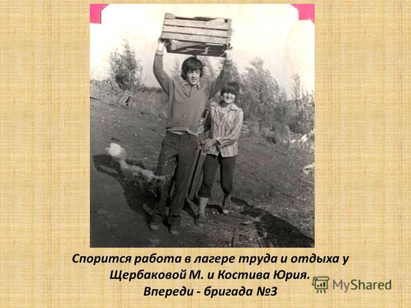 Спорится работа в лагере труда и отдыха у Щербаковой М. и Костива Юрия. Впереди - бригада 3
