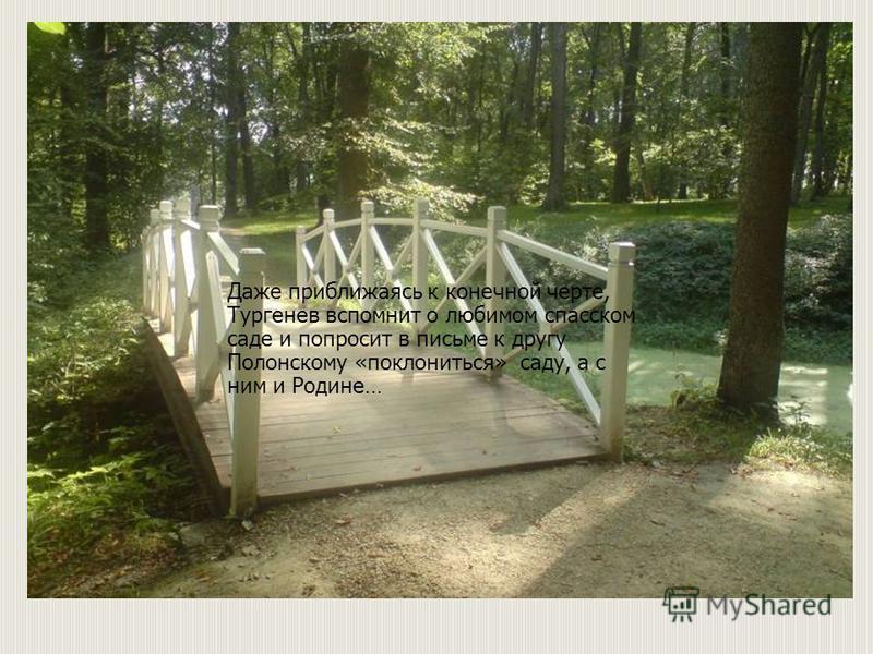 Музей-заповедник Тургенева Даже приближаясь к конечной черте, Тургенев вспомнит о любимом спасском саде и попросит в письме к другу Полонскому «поклониться» саду, а с ним и Родине…