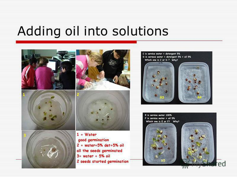 Adding oil into solutions