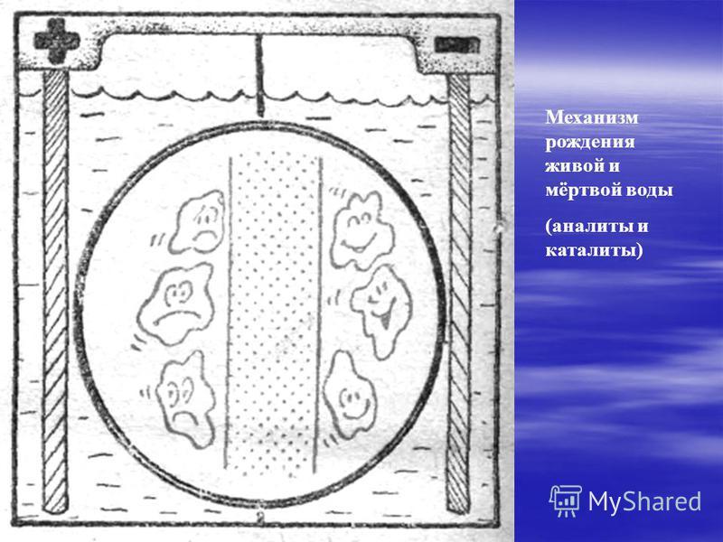 Механизм рождения живой и мёртвой воды (анализы и каталиты)