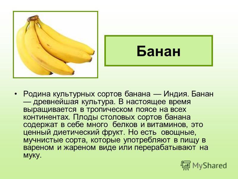 Банан Родина культурных сортов банана Индия. Банан древнейшая культура. В настоящее время выращивается в тропическом поясе на всех континентах. Плоды столовых сортов банана содержат в себе много белков и витаминов, это ценный диетический фрукт. Но ес