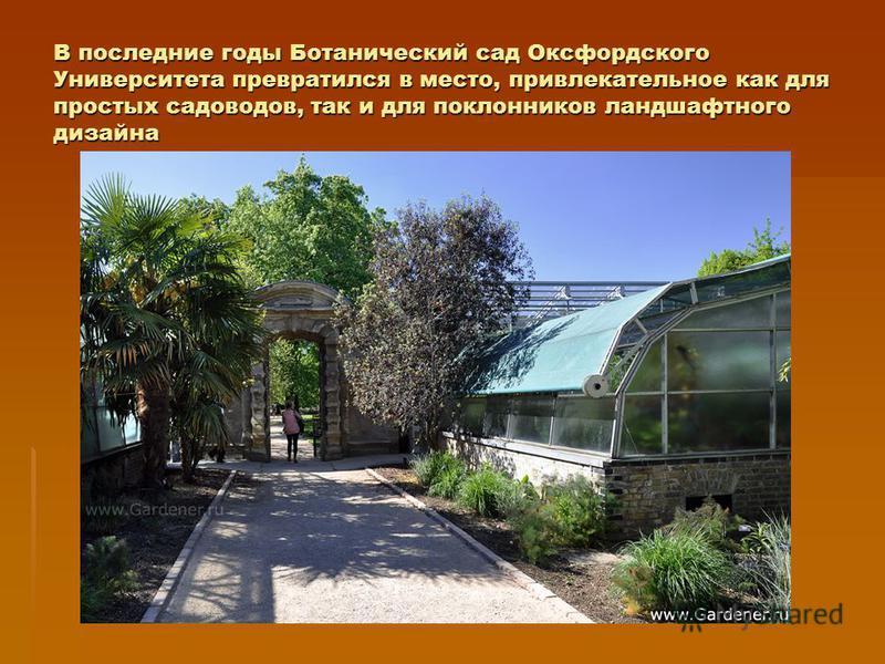 В последние годы Ботанический сад Оксфордского Университета превратился в место, привлекательное как для простых садоводов, так и для поклонников ландшафтного дизайна