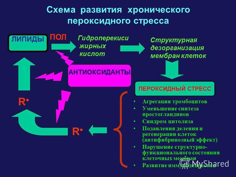 Схема развития хронического пероксидного стресса Агрегация тромбоцитов Уменьшение синтеза простагландинов Синдром цитолиза Подавления деления и регенерации клеток (анти фибринозный эффект) Нарушение структурно- функционального состояния клеточных мем