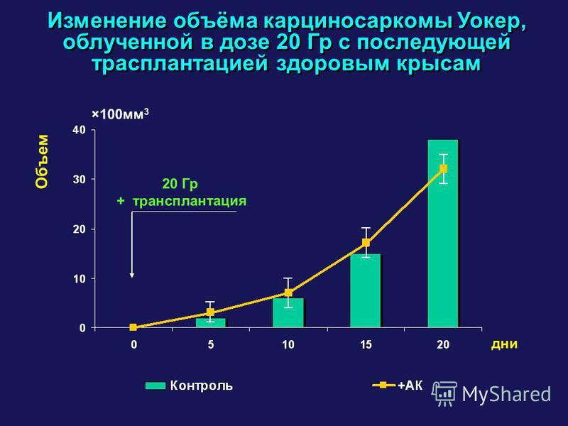 Изменение объёма карциносаркомы Уокер, облученной в дозе 20 Гр с последующей трасплантацией здоровым крысам Объем ×100 мм 3 дни 20 Гр + трансплантация