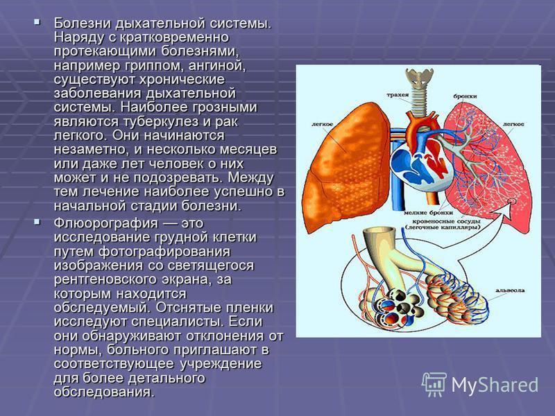 Болезни дыхательной системы. Наряду с кратковременно протекающими болезнями, например гриппом, ангиной, существуют хронические заболевания дыхательной системы. Наиболее грозными являются туберкулез и рак легкого. Они начинаются незаметно, и несколько