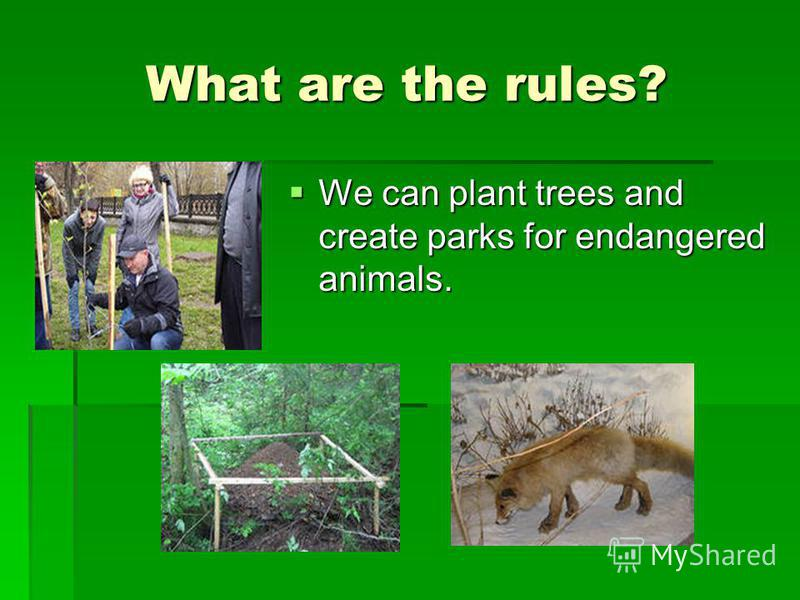 What are the rules? We can plant trees and create parks for endangered animals. We can plant trees and create parks for endangered animals.