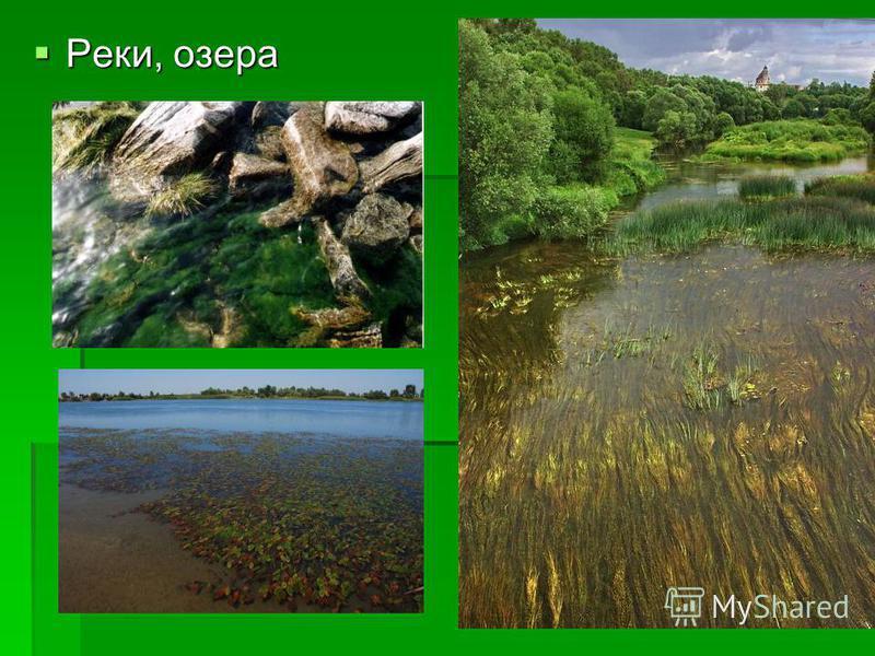 Реки, озера Реки, озера