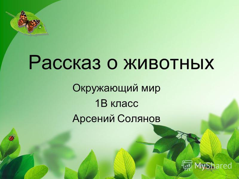 Рассказ о животных Окружающий мир 1В класс Арсений Солянов