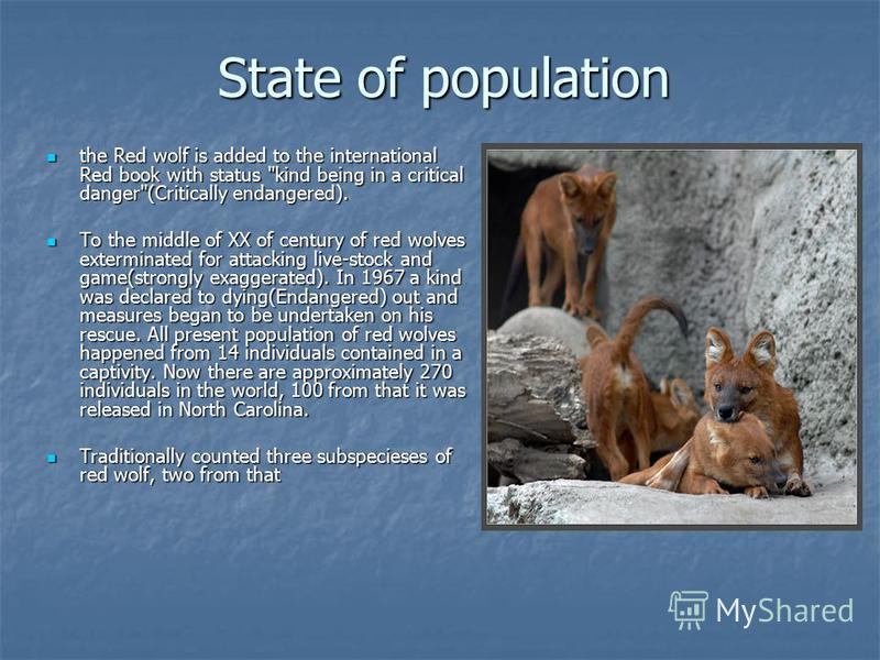 State of population the Red wolf is added to the international Red book with status