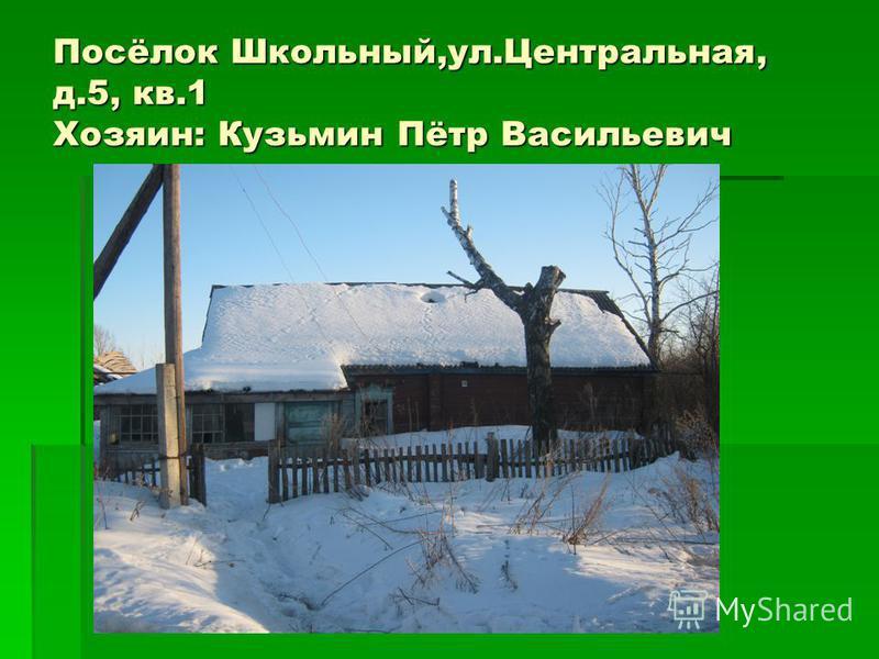 Посёлок Школьный,ул.Центральная, д.5, кв.1 Хозяин: Кузьмин Пётр Васильевич