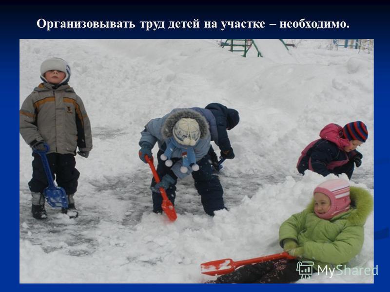 Организовывать труд детей на участке – необходимо.