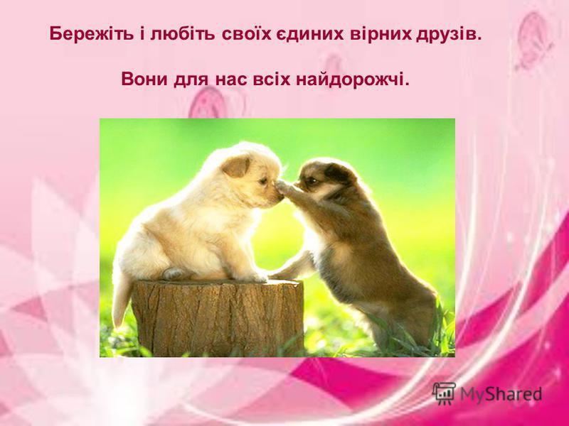Бережіть і любіть своїх єдиних вірних друзів. Вони для нас всіх найдорожчі.