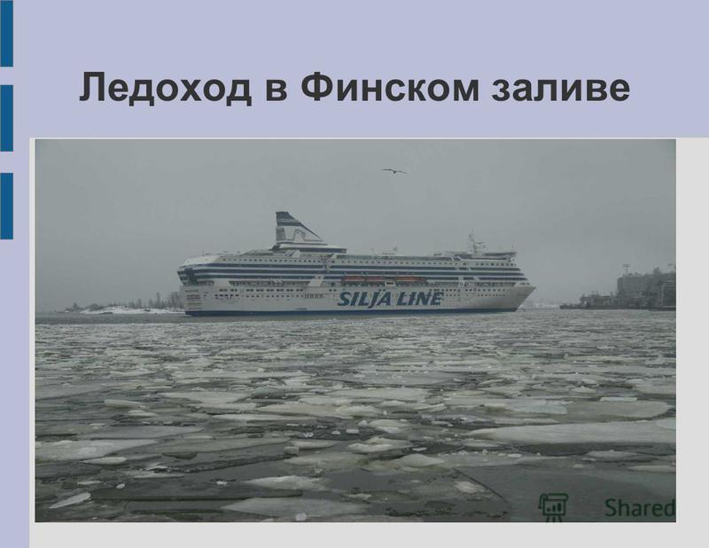 Ледоход в Финском заливе