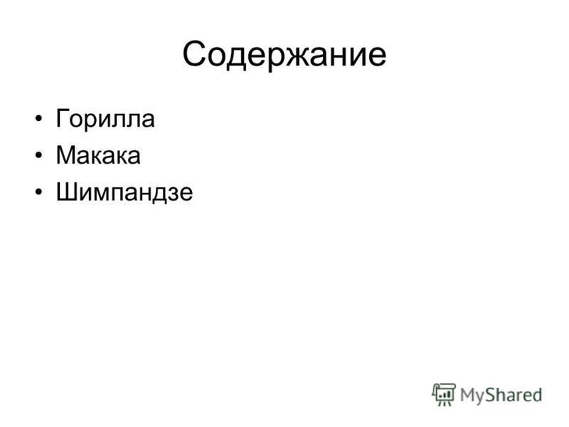 Содержание Горилла Макака Шимпандзе