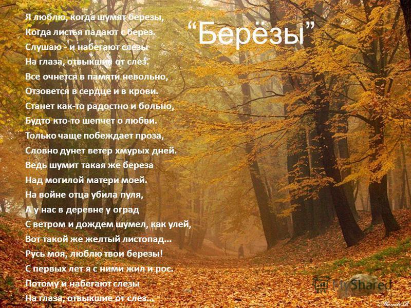 Берёзы. Я люблю, когда шумят березы, Когда листья падают с берез. Слушаю - и набегают слезы На глаза, отвыкшие от слез. Все очнется в памяти невольно, Отзовется в сердце и в крови. Станет как-то радостно и больно, Будто кто-то шепчет о любви. Только