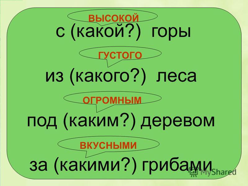 (с)горы, (с)бежал, (из)леса, (под)деревом, (вы)бежал, (от)вязал, (по)садил,(за)грибами Проверка Найдите предлоги со словами, выпишите.