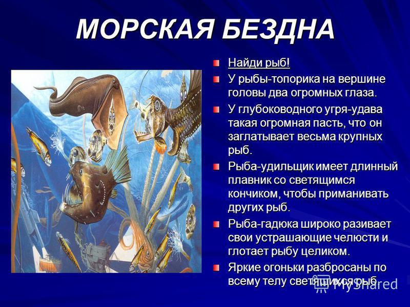 МОРСКАЯ БЕЗДНА Найди рыб! У рыбы-топорика на вершине головы два огромных глаза. У глубоководного угря-удава такая огромная пасть, что он заглатывает весьма крупных рыб. Рыба-удильщик имеет длинный плавник со светящимся кончиком, чтобы приманивать дру