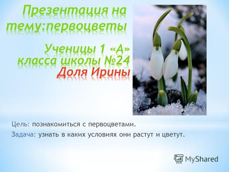 Цель: познакомиться с первоцветами. Задача: узнать в каких условиях они растут и цветут.
