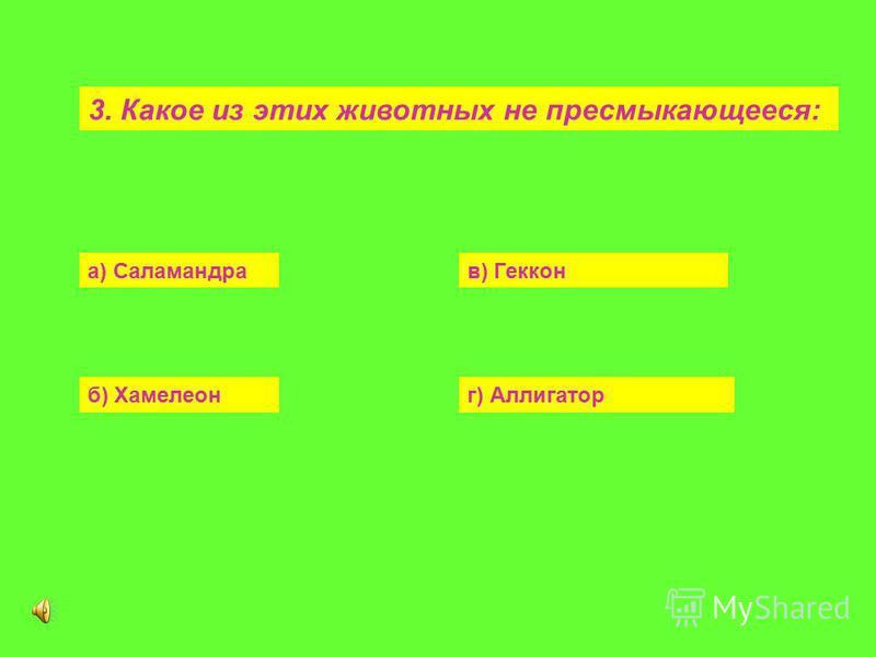 3. Какое из этих животных не пресмыкающееся: а) Саламандрав) Геккон б) Хамелеонг) Аллигатор