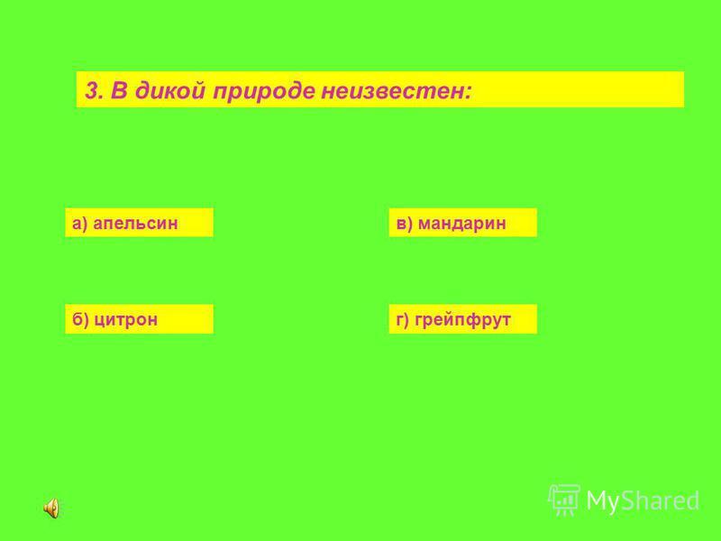 3. В дикой природе неизвестен: а) апельсинв) мандарин б) цитронг) грейпфрут