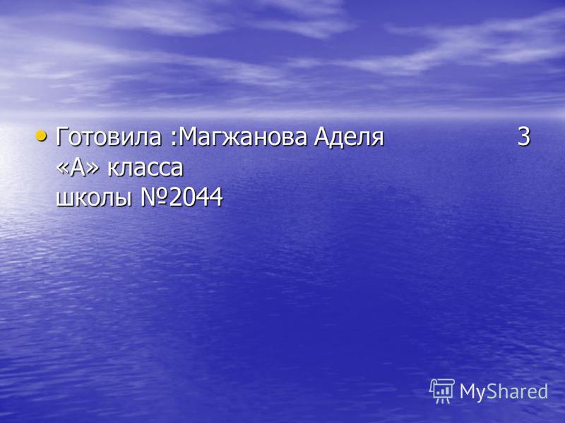 Готовила :Магжанова Аделя 3 «А» класса школы 2044