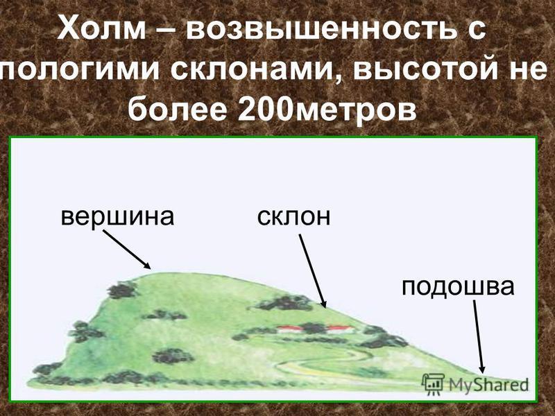 Холм – возвышенность с пологими склонами, высотой не более 200 метров вершина склон подошва